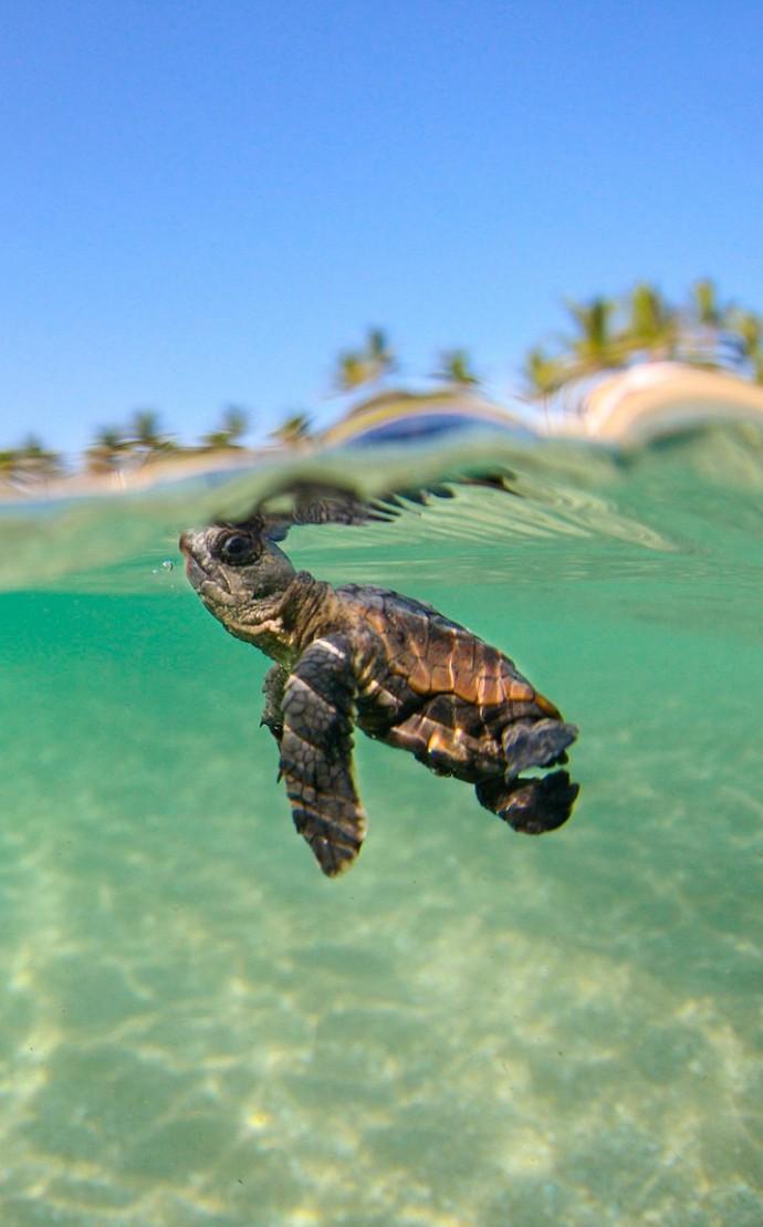 7 parajes naturales que nos dejarán sin habla por su ecosistema